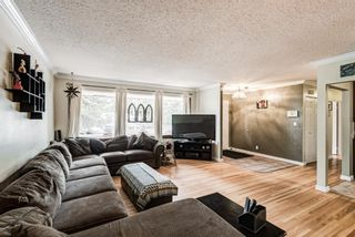 Photo 15: 82 Thornlee Crescent NW in Calgary: Thorncliffe Detached for sale : MLS®# A1146440