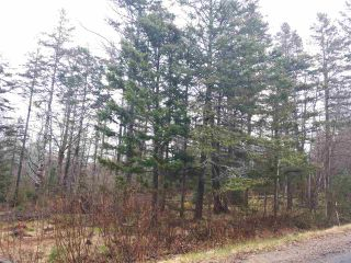 Photo 1: LOT Stronach Mountain Road in Forest Glade: 400-Annapolis County Vacant Land for sale (Annapolis Valley)  : MLS®# 201924165