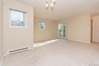 Photo 9: 106 3258 Alder St in VICTORIA: SE Quadra Condo for sale (Saanich East)  : MLS®# 775931