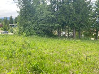 Photo 6: 30 Walsh Road in Blind Bay: SHUSWAP LAKE ESTATES Vacant Land for sale : MLS®# 10235083
