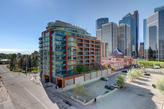 Photo 12: 619 222 RIVERFRONT Avenue SW in Calgary: Chinatown Apartment for sale : MLS®# A1102537