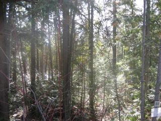 Photo 5: Lot 84 Anglemont  Way in Anglemont: Land Only for sale : MLS®# 10001830