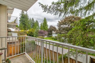 """Photo 20: 206 1187 PIPELINE Road in Coquitlam: New Horizons Condo for sale in """"PINE COURT"""" : MLS®# R2616614"""