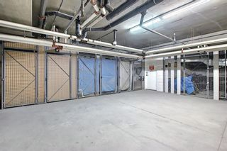 Photo 39: 303 495 78 Avenue SW in Calgary: Kingsland Apartment for sale : MLS®# A1120349