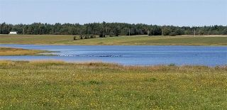 Photo 3: Lot 13 Sandpiper Lane in Port Howe: 102N-North Of Hwy 104 Vacant Land for sale (Northern Region)  : MLS®# 201827349