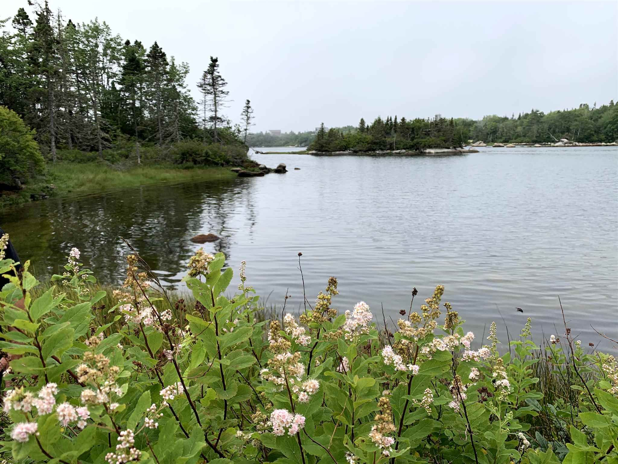 Photo 8: Photos: Lot 5A East Dover Road in East Dover: 40-Timberlea, Prospect, St. Margaret`S Bay Vacant Land for sale (Halifax-Dartmouth)  : MLS®# 202104851