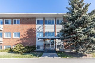 Main Photo: 5 2020 16 Avenue NW in Calgary: Banff Trail Apartment for sale : MLS®# A1091837