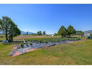 Photo 28: 41706 KEITH WILSON Road in Chilliwack: Greendale Chilliwack House for sale (Sardis)  : MLS®# R2581052