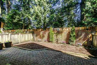 """Photo 16: 10 21801 DEWDNEY TRUNK Road in Maple Ridge: West Central Townhouse for sale in """"SHERWOOD PARK"""" : MLS®# R2159131"""