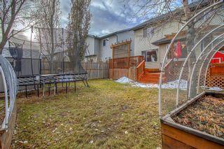 Photo 40: 230 Auburn Bay Boulevard SE in Calgary: Auburn Bay Detached for sale : MLS®# A1045900