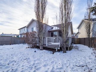 Photo 33: 139 Springs Crescent SE: Airdrie Detached for sale : MLS®# A1065825