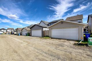 Photo 40: 168 SKYVIEW SPRINGS Gardens NE in Calgary: Skyview Ranch Detached for sale : MLS®# A1093077