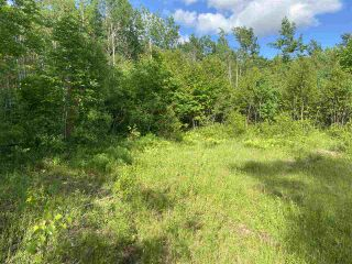Photo 7: 38 Stewart Road in Lyons Brook: 108-Rural Pictou County Vacant Land for sale (Northern Region)  : MLS®# 202011938