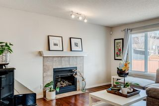 Photo 10: 137 Saddletree Close NE in Calgary: Saddle Ridge Detached for sale : MLS®# A1091689