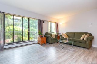 Photo 5: 211 1005 McKenzie Ave in Saanich: SE Quadra Condo for sale (Saanich East)  : MLS®# 843439