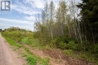 Photo 5: Lot Babcock RD in Sackville: Vacant Land for sale : MLS®# M135436