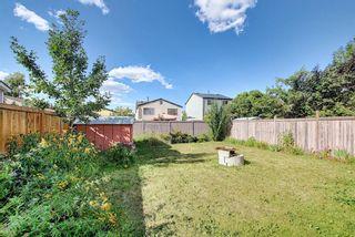Photo 46: 80 Aberfoyle Close NE in Calgary: Abbeydale Detached for sale : MLS®# A1137613