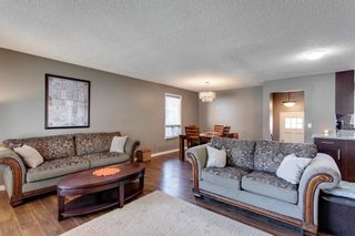 Photo 6: 11 Bedwood Place NE in Calgary: Beddington Heights Detached for sale : MLS®# A1118469