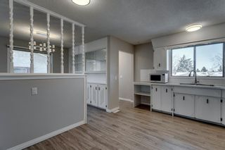 Photo 15: 3812 49 Street NE in Calgary: Whitehorn Detached for sale : MLS®# A1054455