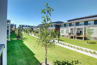 Photo 12: 458 Nolan Hill Drive NW in Calgary: Nolan Hill Row/Townhouse for sale : MLS®# A1125269