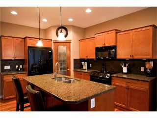 Photo 16: 457 BOULDER CREEK Way S: Langdon House for sale : MLS®# C4075280