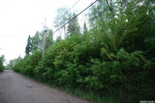 Photo 3: 156 Carwin Park Drive in Emma Lake: Lot/Land for sale : MLS®# SK846952