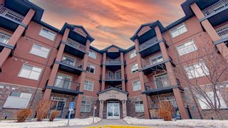 Main Photo: 313 69 Ironstone Drive SE: Red Deer Apartment for sale : MLS®# A1076180
