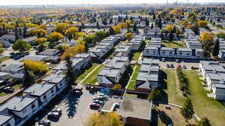 Photo 28: 236 3307 116A Avenue in Edmonton: Zone 23 Townhouse for sale : MLS®# E4265522