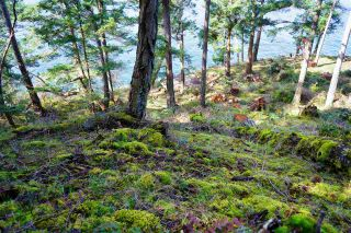 Photo 31: 277 LAURA POINT Road: Mayne Island Land for sale (Islands-Van. & Gulf)  : MLS®# R2554109