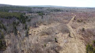 Photo 6: 8532 Trunk 4 Highway in Telford: 108-Rural Pictou County Vacant Land for sale (Northern Region)  : MLS®# 202108300
