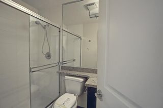 Photo 23: 901 77 Spruce Place SW in Calgary: Spruce Cliff Apartment for sale : MLS®# A1104367