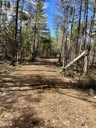 Photo 5: Lot 3 Highway 8 in Harmony: Vacant Land for sale : MLS®# 202108277