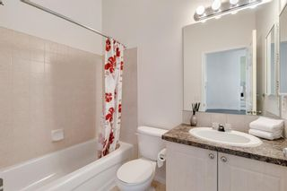 Photo 35: 18 Copperfield Crescent SE in Calgary: Copperfield Detached for sale : MLS®# A1141643