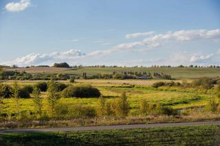 Photo 9: 217 Riverview Way: Rural Sturgeon County Rural Land/Vacant Lot for sale : MLS®# E4257225