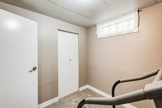Photo 32: 173 Martinglen Way NE in Calgary: Martindale Detached for sale : MLS®# A1144697