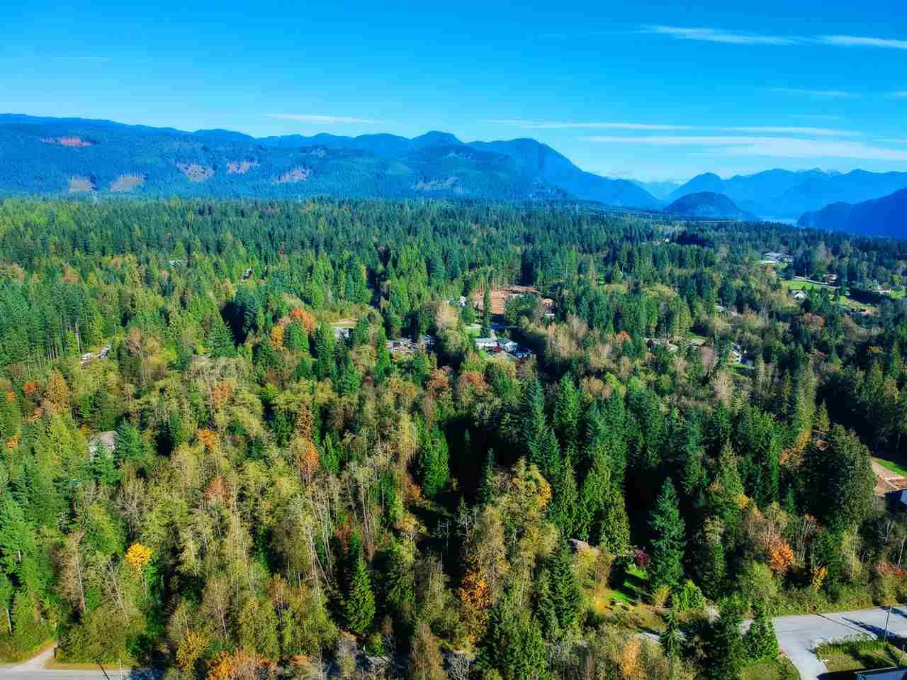 Main Photo: 30255 BRACKLEY Avenue in Mission: Stave Falls Land for sale : MLS®# R2527114