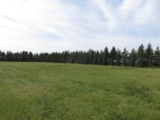 Photo 12: 0 Centreline Road: RM Springfield Vacant Land for sale (R04)  : MLS®# 202103923
