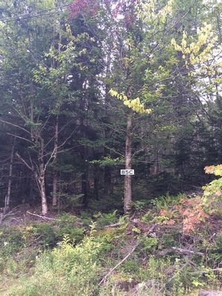 Photo 2: Lot X- 85C Beamish Road in East Uniacke: 105-East Hants/Colchester West Vacant Land for sale (Halifax-Dartmouth)  : MLS®# 202123579