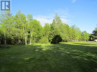 Photo 6: 25B TRANS CANADA Highway in PYNNS BROOK: Vacant Land for sale : MLS®# 1229378