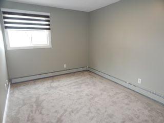 Photo 26:  in Edmonton: Zone 29 Condo for sale : MLS®# E4248069