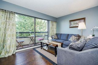 """Photo 16: 204 1048 KING ALBERT Avenue in Coquitlam: Central Coquitlam Condo for sale in """"BLUE MOUNTAIN MANOR"""" : MLS®# R2560966"""