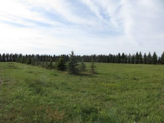 Photo 8: 0 Centreline Road: RM Springfield Vacant Land for sale (R04)  : MLS®# 202103923