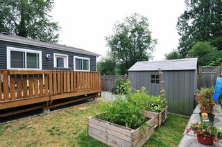 """Photo 17: 146 10221 WILSON Street in Mission: Mission BC Manufactured Home for sale in """"TRIPLE CREEK ESTATES"""" : MLS®# R2599300"""
