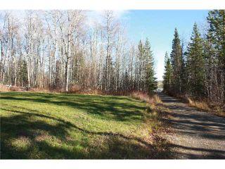 Photo 8: 6855 LAMBERTUS Road in Prince George: Reid Lake Manufactured Home for sale (PG Rural North (Zone 76))  : MLS®# N205699