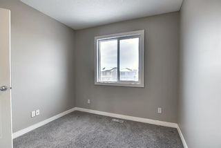 Photo 26: 66 Redstone Road NE in Calgary: Redstone Detached for sale : MLS®# A1071351