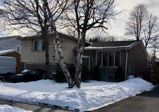 Photo 1: 14 Glenstroke Drive in Toronto: Agincourt South-Malvern West House (Sidesplit 3) for sale (Toronto E07)  : MLS®# E4692356