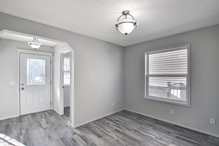 Photo 14: 253 Elgin Way SE in Calgary: McKenzie Towne Detached for sale : MLS®# A1087799