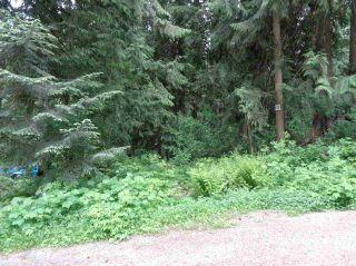 Photo 1: 71644 LEAF Lane in Hope: Hope Sunshine Valley Land for sale : MLS®# R2228648