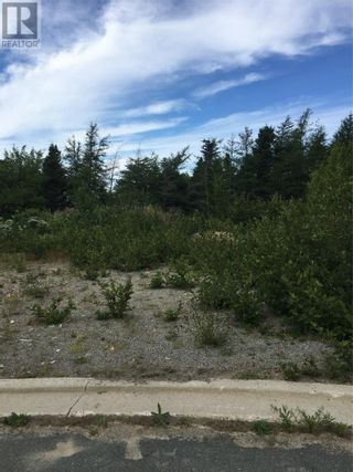 Photo 15: 11 Mitchview Estates in Conception Bay South: Vacant Land for sale : MLS®# 1232778