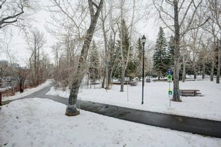 Photo 38: 218 305 18 Avenue SW in Calgary: Mission Apartment for sale : MLS®# A1095821
